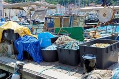 Del-sredstev-od-prodaje-bo-Skaza-namenila-ciscenju-oceanov