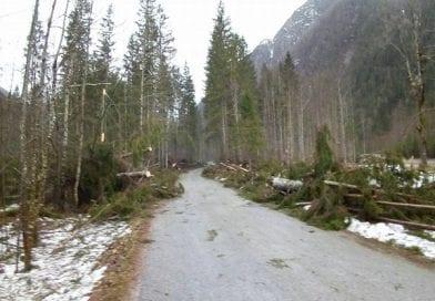 Posledice vetroloma v Savinjski dolini še odpravljajo