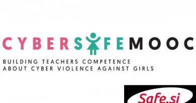 Delavnica za učitelje o spletnem nasilju na šolah